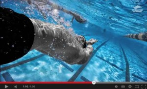 Masters plávanie je cesta
